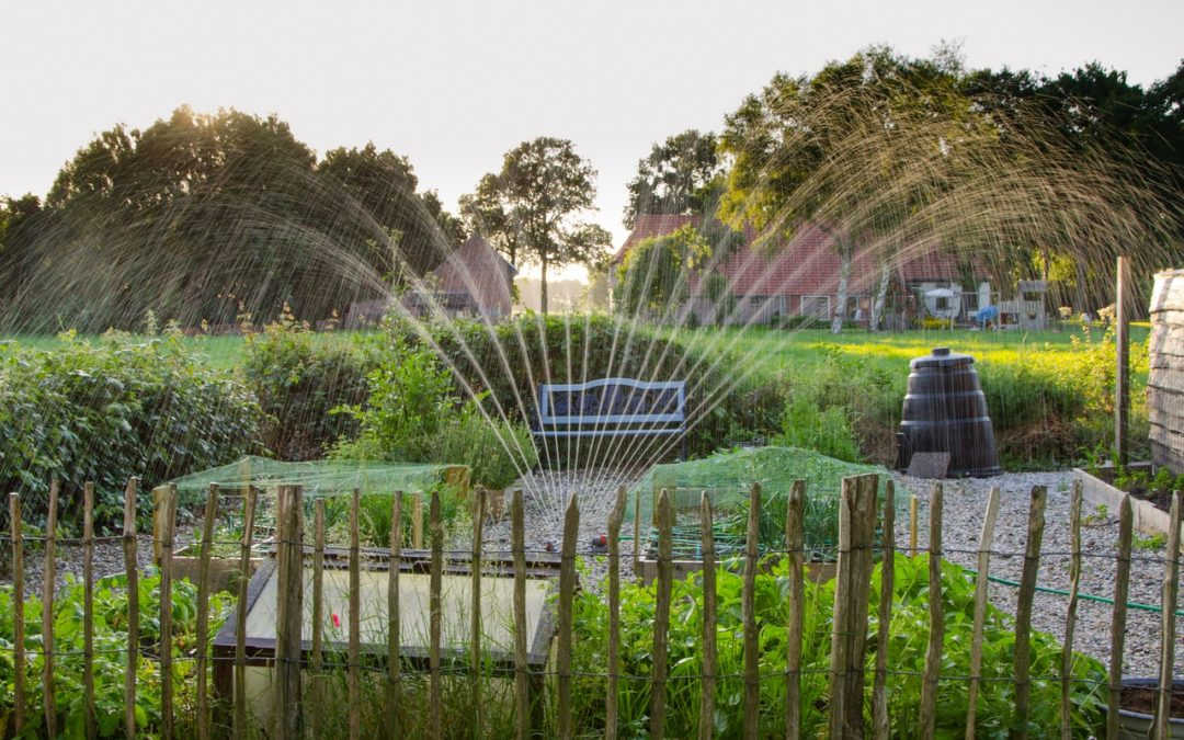 water-management-and-irrigation-services-in-Orlando-Florida