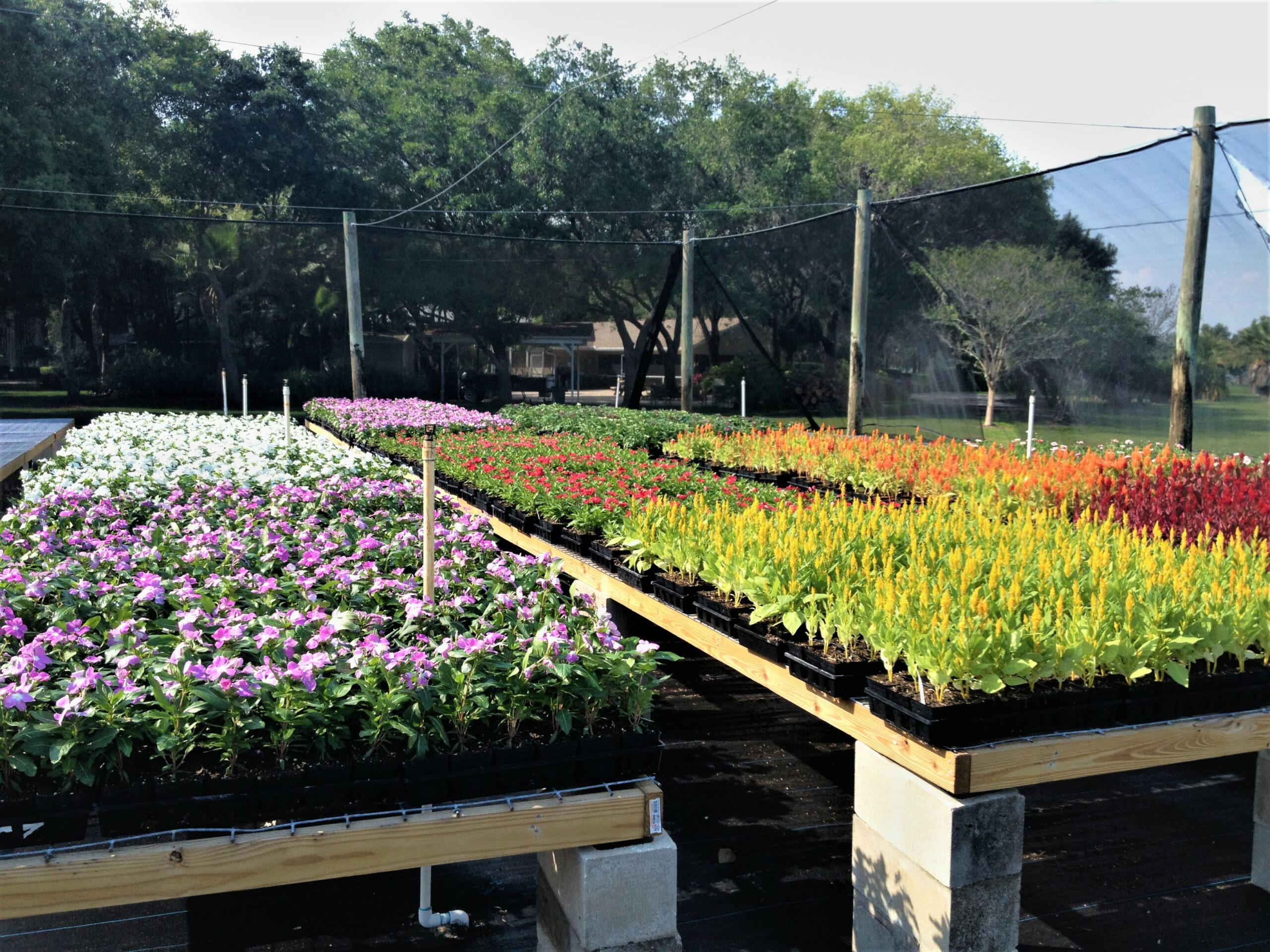 Weber Environmental Services - commercial landscaping
