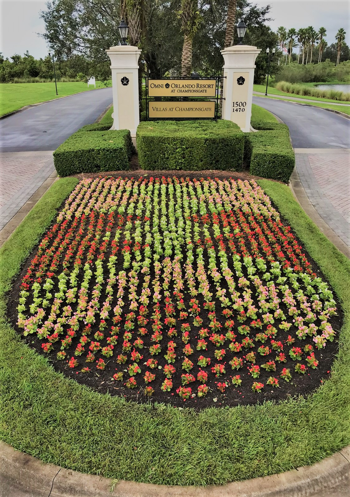 the Omni Hotel - Weber Environmental Services - commercial landscape