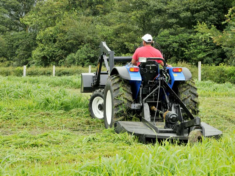 bush hogging - weber environmental services